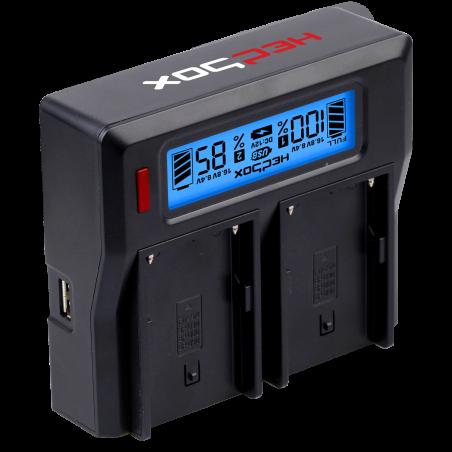 RP-DC50 HEDBOX Carica batteria LCD doppio 14.4V