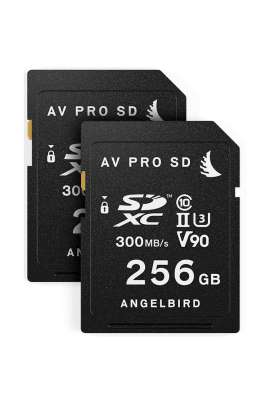 MATCH PACK PANASONIC EVA1 2x256 Angelbird pacchetto combinato 512GB per Panasonic EVA1